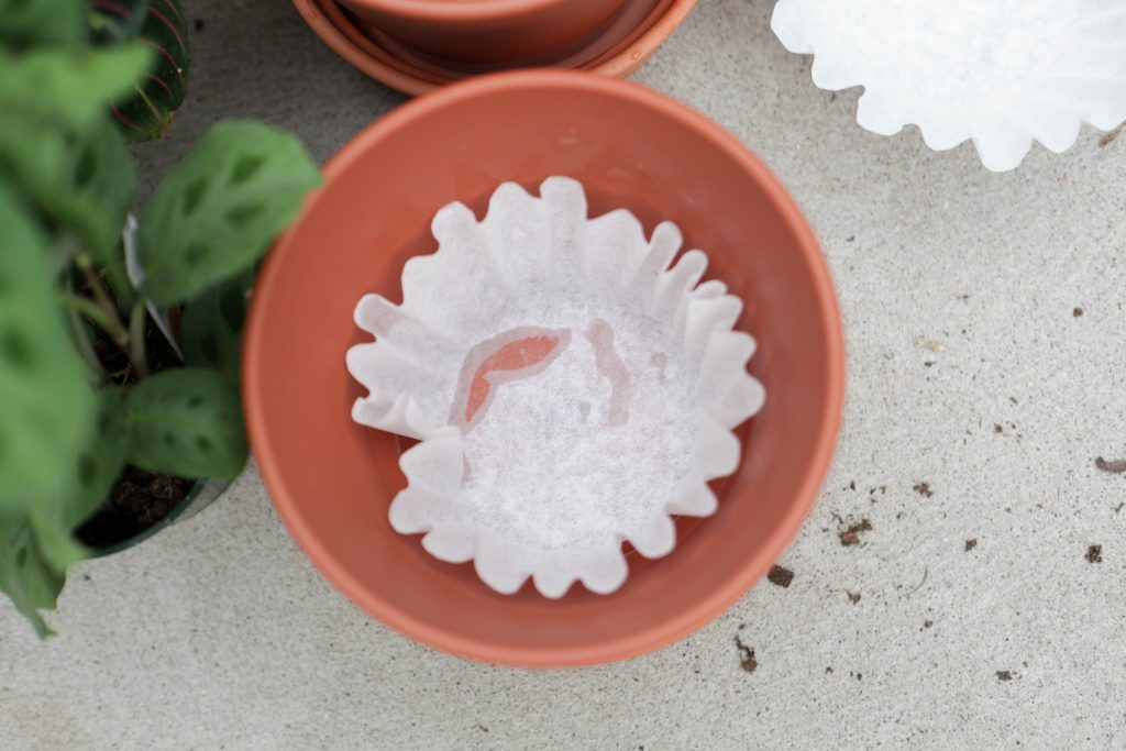 Use a coffee filter to cover the drainage hole