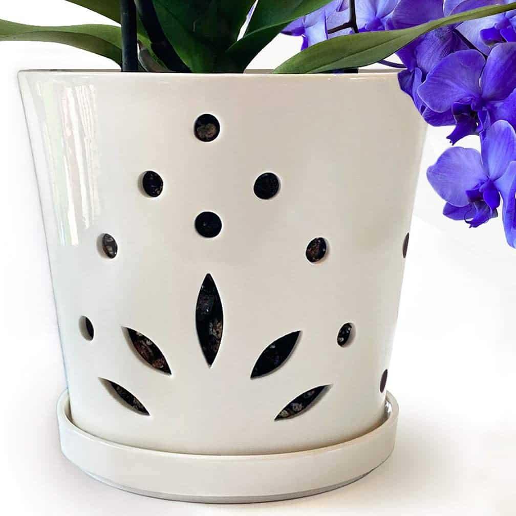 Atri Ceramic Orchid Pot with Holes