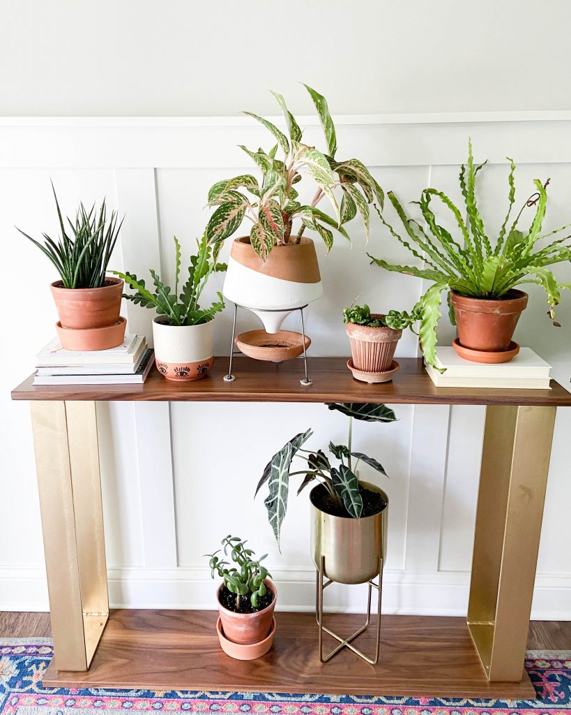 A plant covered console table
